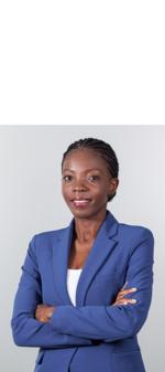 Breves notas sobre arbitragem em Moçambique 1